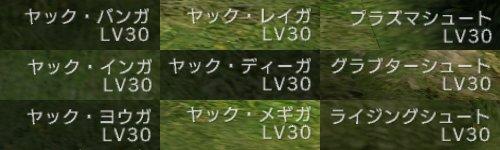 一気にLV30が9個増えました